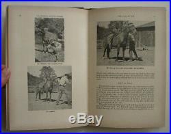 The California Stock Horse, SIGNED 1949 1st Edition, Luis Ortega